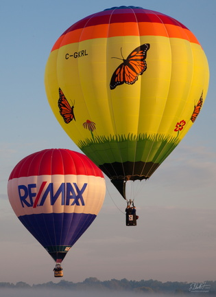 Re/Max and the Butterflies