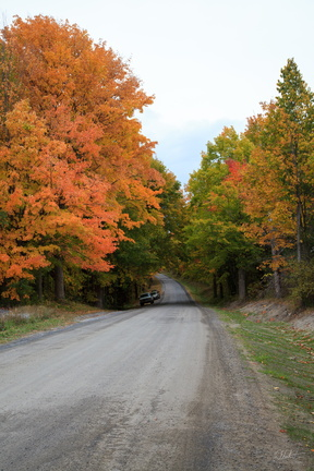 Fall on a Mountain Road