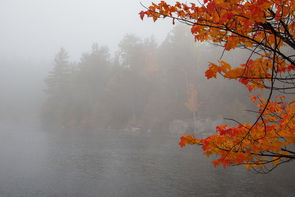 Foggy Afternoon on Copperas Pond